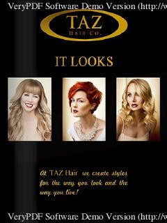 TAZ Hair Co. – Styles Flip Book